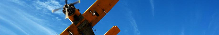 COORDINAMENTO LIBERTARIO ISONTINO Rotating Header Image